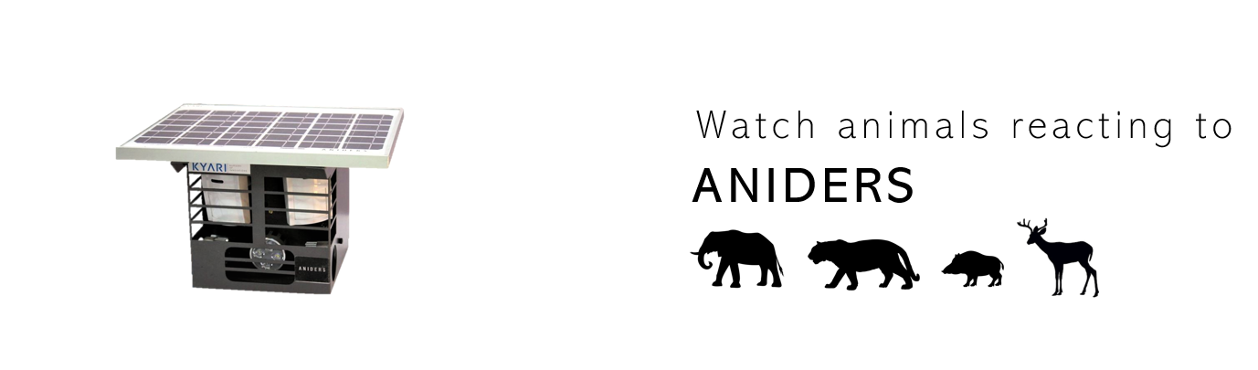 ANIDERS video